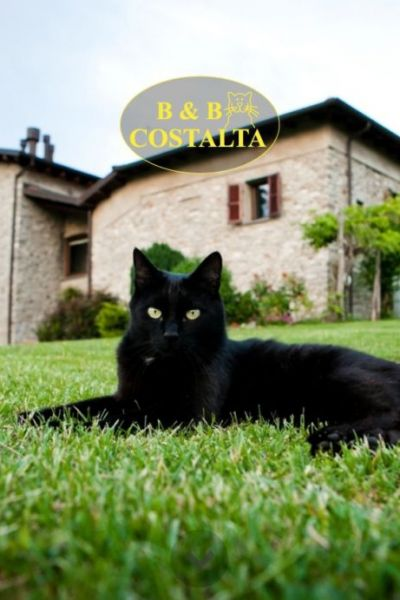Bed & Breakfast Costalta