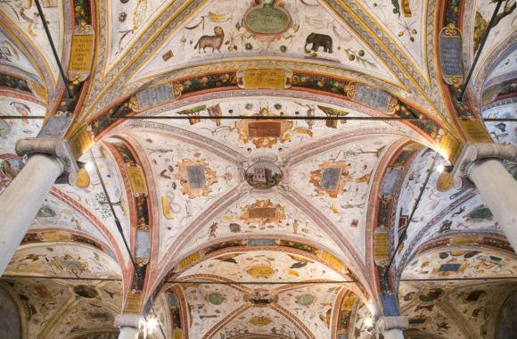 Biblioteca di San Giovanni particolare soffitto