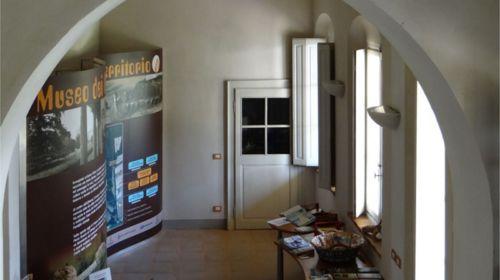 Sala interna del Museo dei Boschi e del Territorio a Sala Baganza