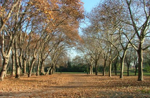Parco Cittadella autunno