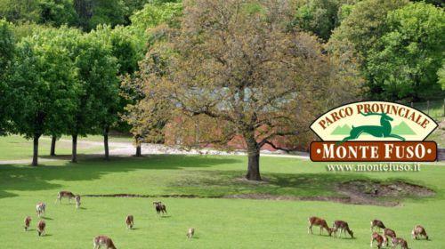 Parco Monte Fuso