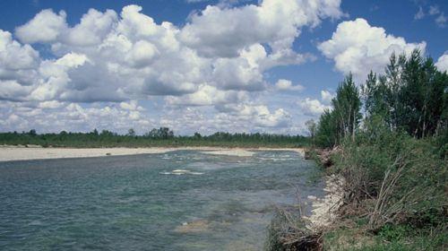 Parco fluviale del Taro