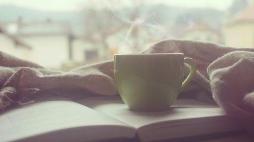 Bed & Breakfast Acamia