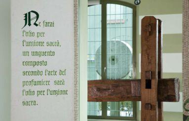 Museo Coppini Arte Olearia