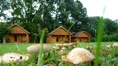 Camping Campo Plano
