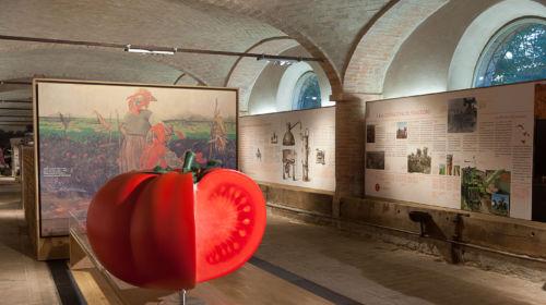 Sala interna del Museo del Pomodoro Corte di Giarola